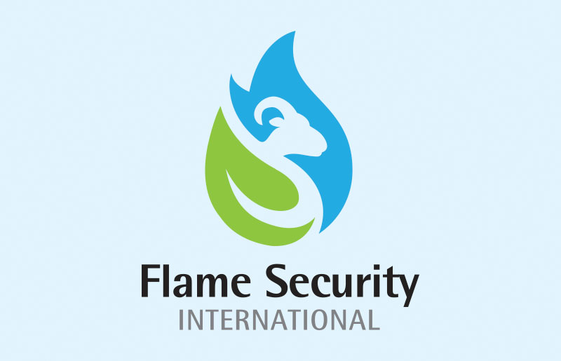 Flame Security International
