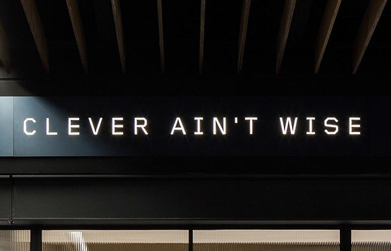 Clever Ain't Wise Visual Branding