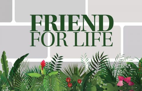 Friend For Life Campaign